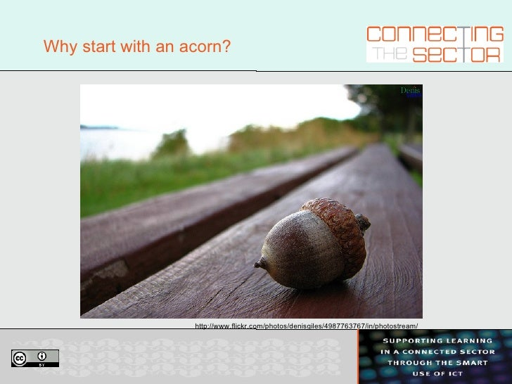 Why start with an acorn? http://www.flickr.com/photos/denisgiles/4987763767/in/photostream/