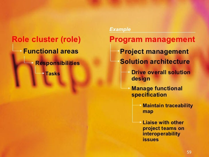Functional   areas Responsibilities Tasks Program management Project management Drive overall solution design Manage funct...