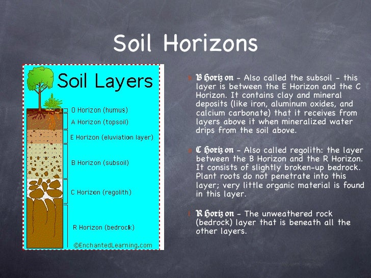 Soil for Soil horizons layers