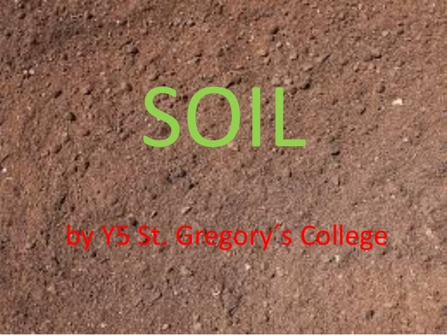 SOILby Y5 St. Gregory´s College