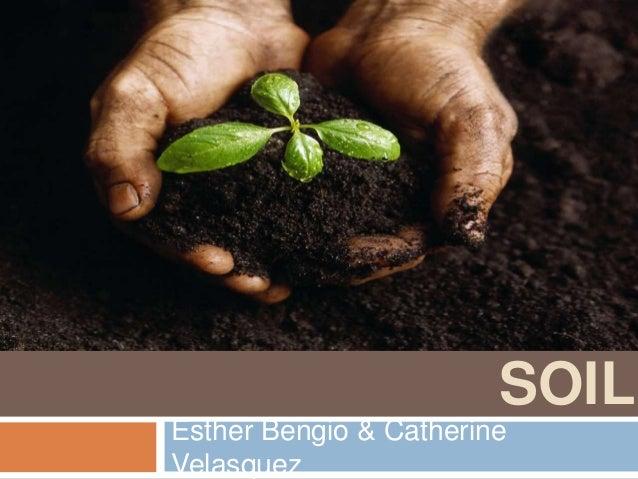 SOIL Esther Bengio & Catherine Velasquez