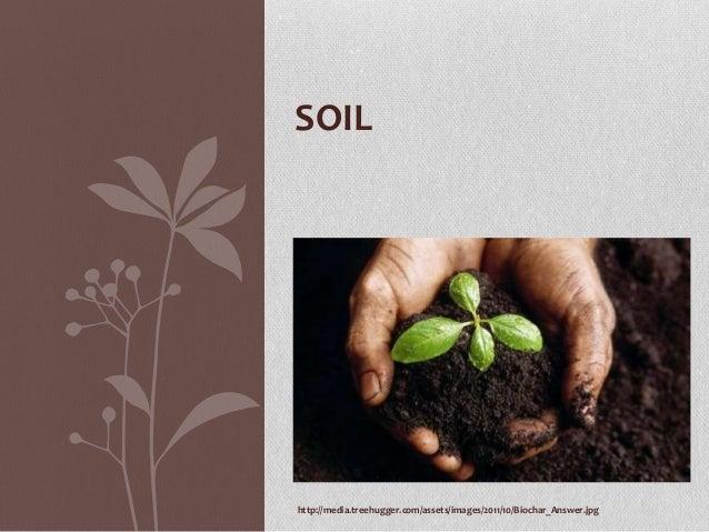 SOIL  http://media.treehugger.com/assets/images/2011/10/Biochar_Answer.jpg