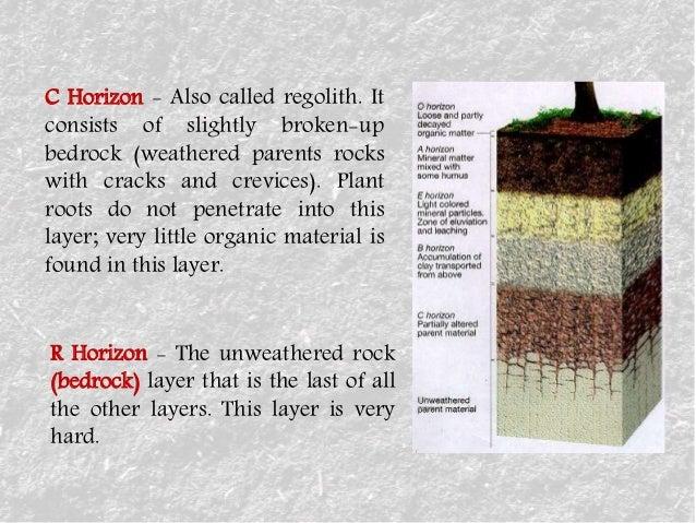 soil-5-638.jpg?cb=1472584639