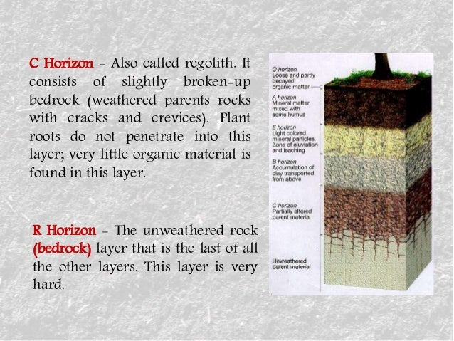 Soil for What 5 materials make up soil