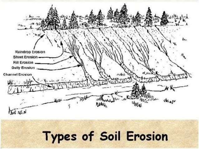 Soil profile soil erosion soil conservation control on floods by various agents ccuart Image collections