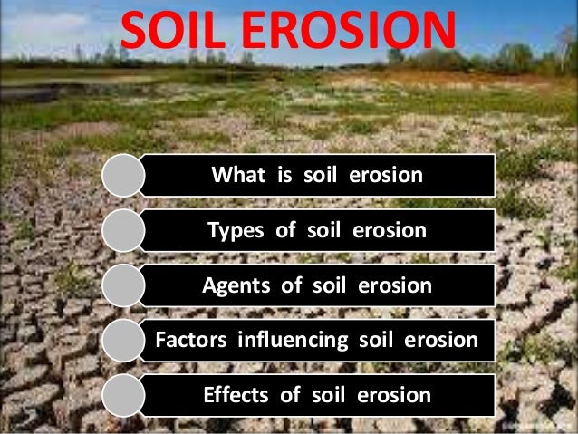 soil erosion and conservation Soils are constantly threatened by farming activities, wind and water erosion and so on here are some ways to conserve soils and help make them healthier.