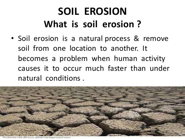 Soil profile soil erosion soil conservation control on for What is soil definition