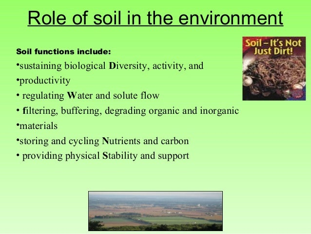 the importance of soil quality Soils are important for human health in a number of ways  2010) soils play a  major role in all of these areas of quality food production and security.