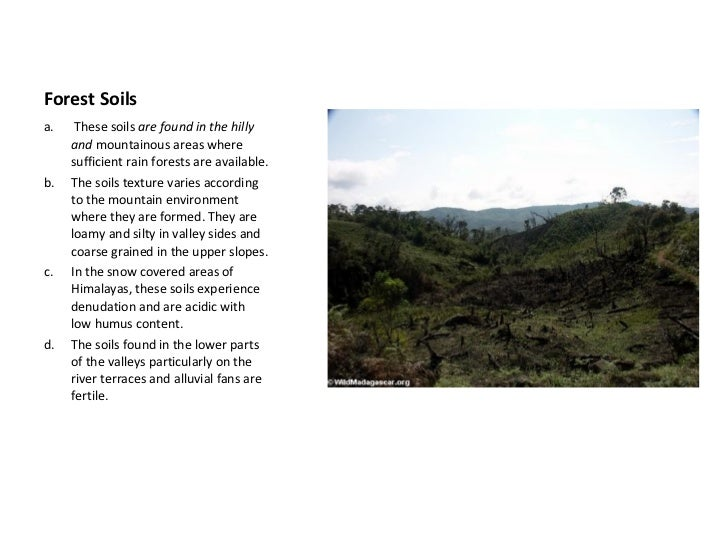 Soil as a resource for Soil resources wikipedia