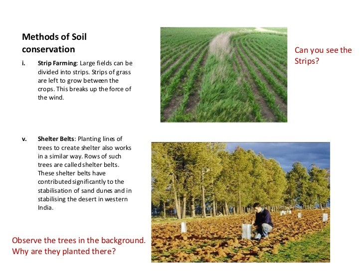 soil conservation essay kentucky Kentucky association of conservation districts auxiliary sponsors three   science, sustainable agriculture, soil science or soil conservation.