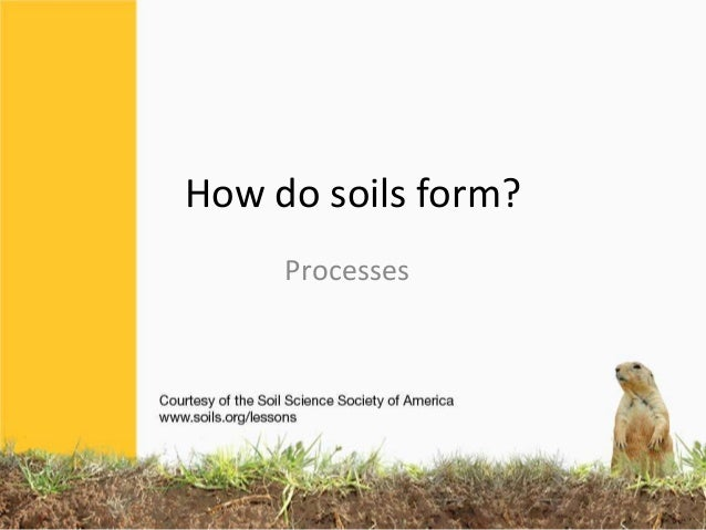 Soil formation processes for Meaning of soil formation