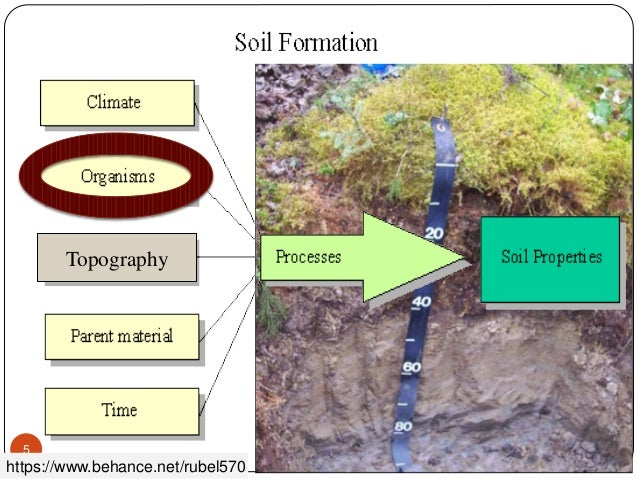 Soil forming factors for Soil forming factors