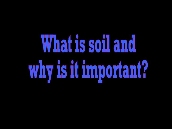 What is soil and  why is it important?