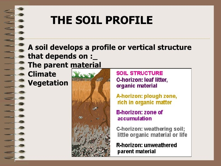 Soil profile for Soil profile video