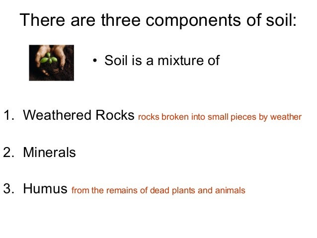 Soil 1 for Mineral constituents of soil