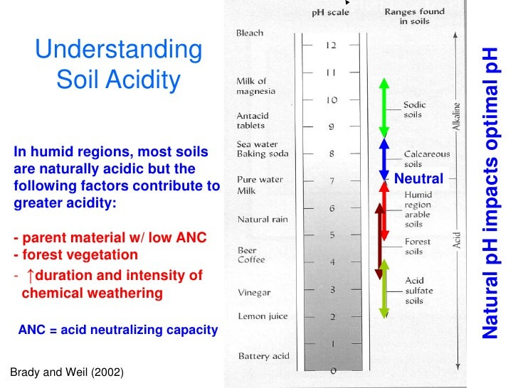 Understanding                                                   Natural pH impacts optimal pH      Soil Acidity  In humid ...
