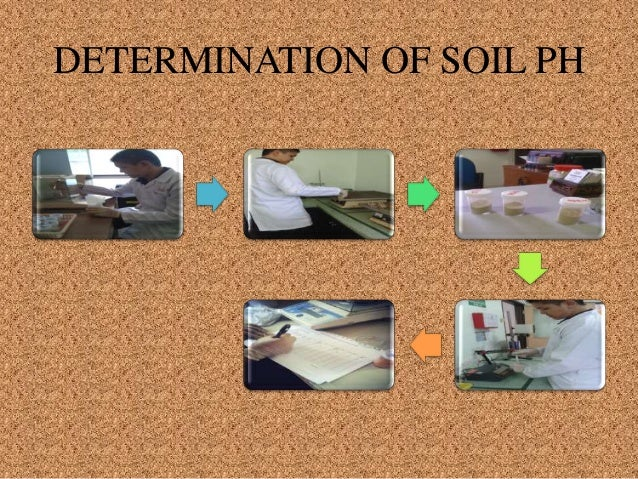 soil analysis Holmes used soil forensics in his investigations, but real detectives do, too  forensic soil analysis is the use of soil science and other disciplines.