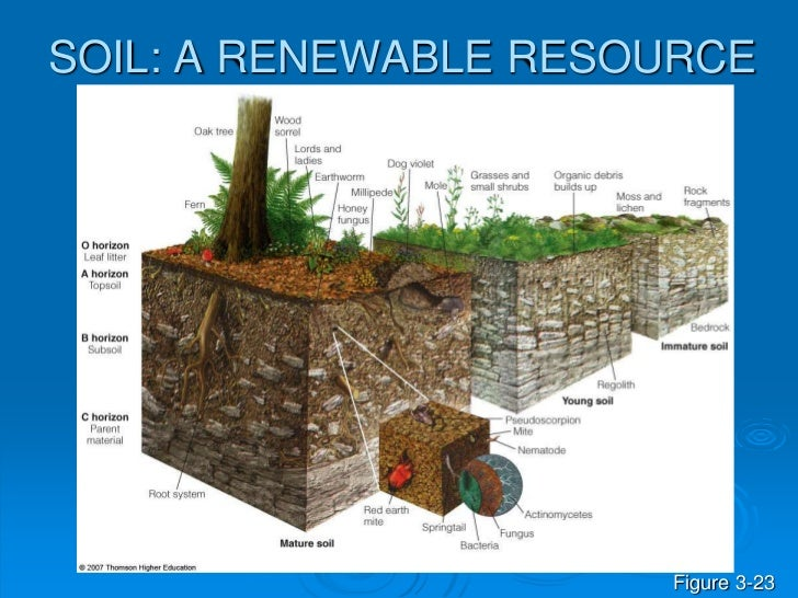 Soil and biomes and cycles ppt for Soil as a resource introduction