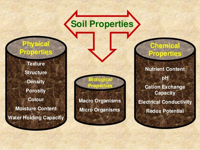 Soil and soil nutrient management in ofc production for Characteristics of soil