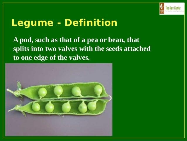 Soils Organic Fertility Management