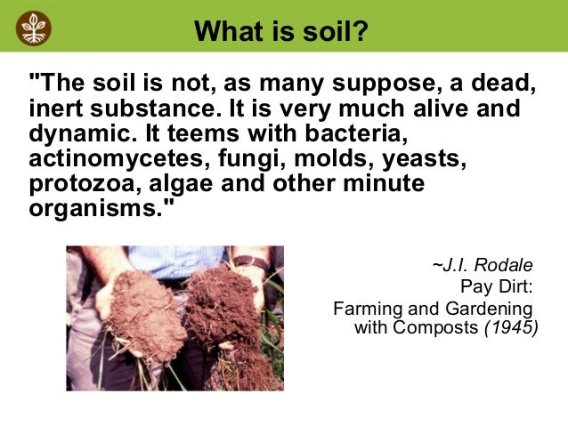 image gallery soil biology