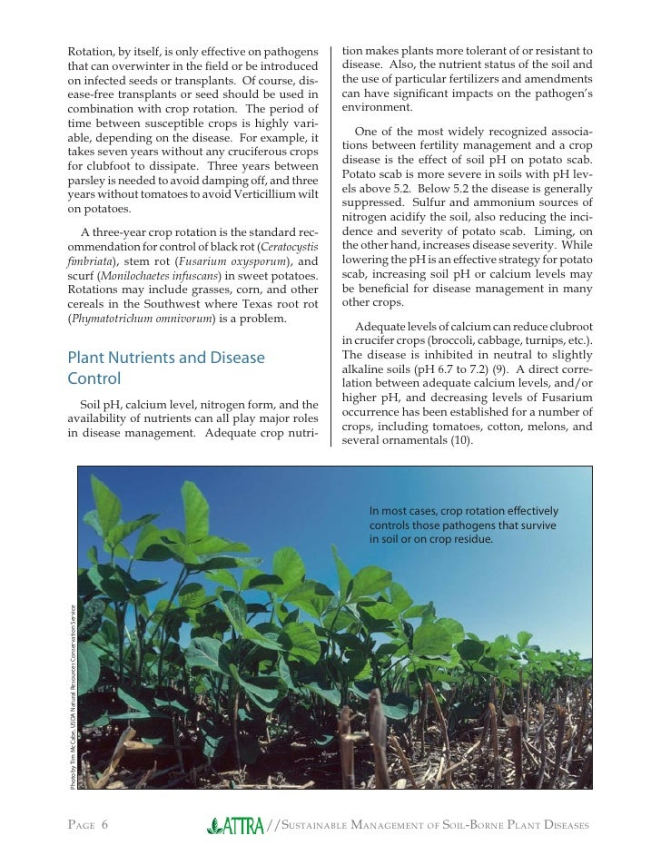 Sustainable management of soil borne plant diseases for Soil borne diseases