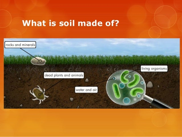 Soil composition for What is soil composed of