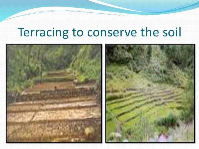 Terracing to conserve the soil