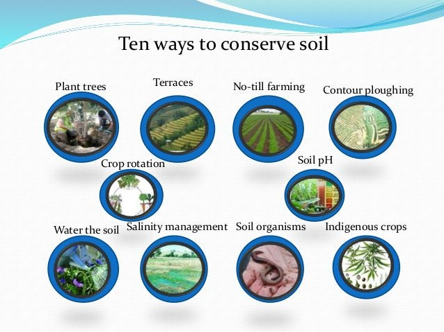 Ten ways to conserve soil Plant trees Terraces No-till farming Contour ploughing Crop rotation Soil pH Water the soil Sali...