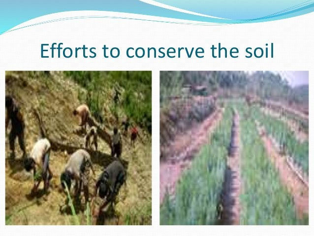 Efforts to conserve the soil
