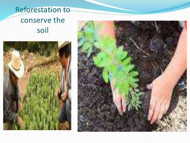 soil conservation ppt. Black Bedroom Furniture Sets. Home Design Ideas