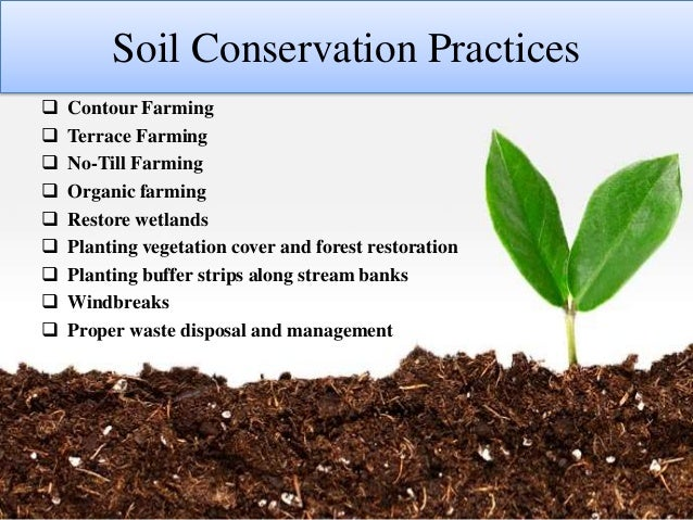 conservation plowing related keywords suggestions