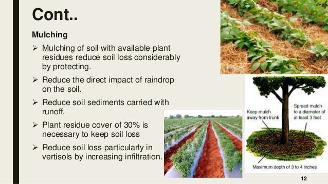 Cont.. Mulching  Mulching of soil with available plant residues reduce soil loss considerably by protecting.  Reduce the...