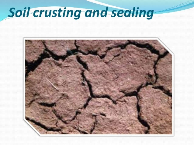 Soil crusting and sealing for Soil resources definition