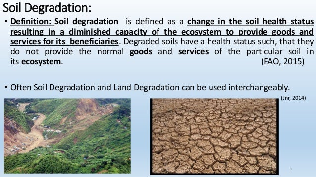 Expert essay writers soil salinization definition kts for Soil resources definition