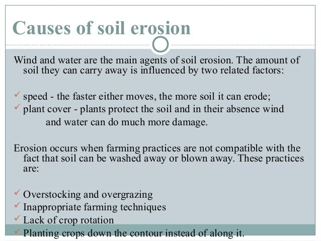 Soil erosion 5 prevention planting wind sciox Images