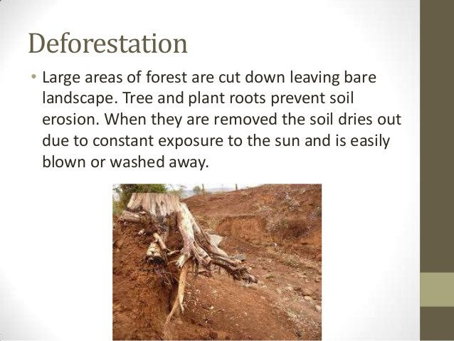 Deforestation • Large areas of forest are cut down leaving bare landscape. Tree and plant roots prevent soil erosion. When...