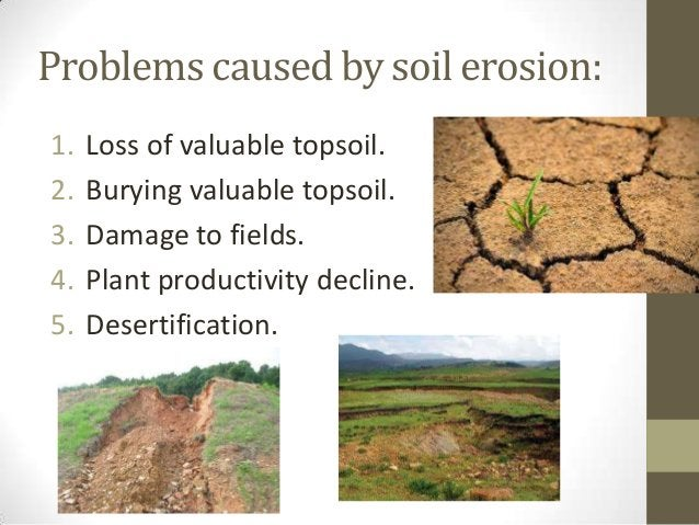 Problems caused by soil erosion: 1. Loss of valuable topsoil. 2. Burying valuable topsoil. 3. Damage to fields. 4. Plant p...