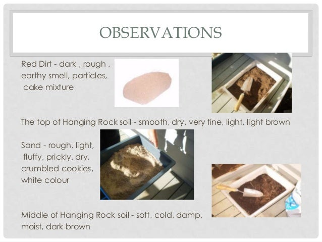 Soil experiment Slide 3