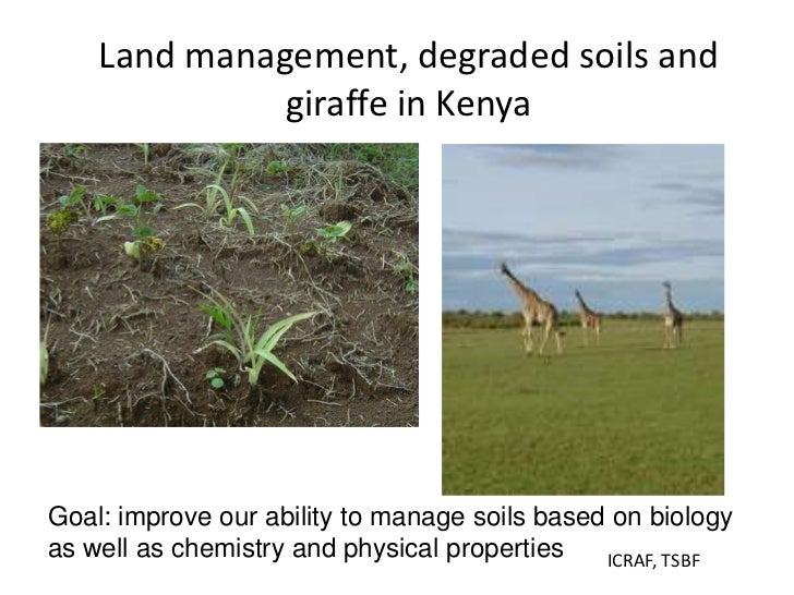 Soil fertility management and eco efficiency of small for Soil use and management