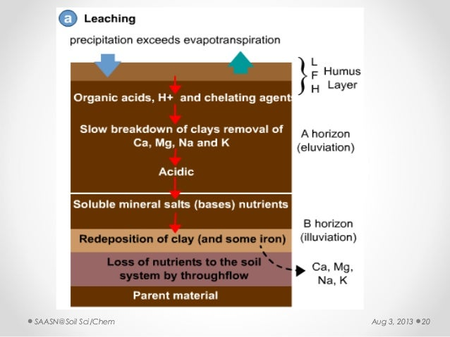 Soil formation lectue ers iii for Soil formation