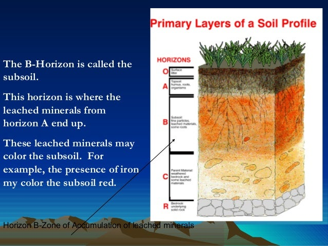 soil health an overview