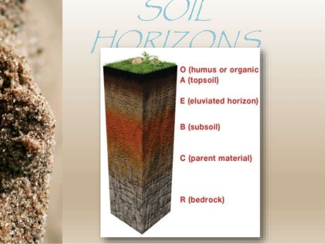 Soil horizons and soil sampling methods for Soil horizons