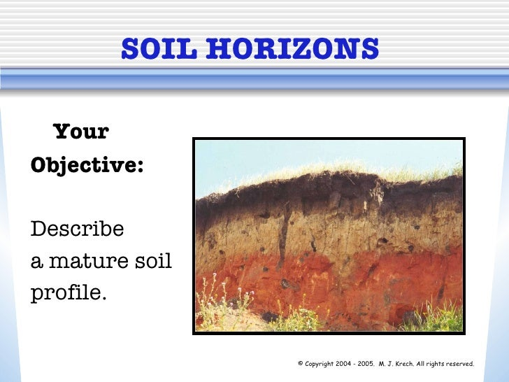SOIL HORIZONS Your  Objective: Describe  a mature soil  profile. © Copyright 2004 - 2005. M. J. Krech. All rights reserve...