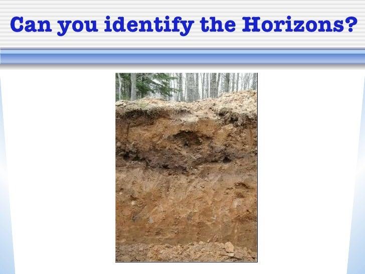 Soil horizons for Soil information in english