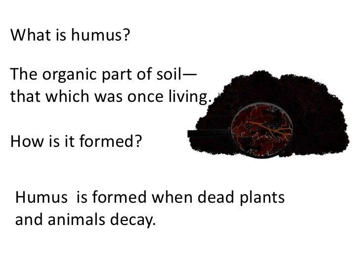 Soil how formed teach for Explain the formation of soil