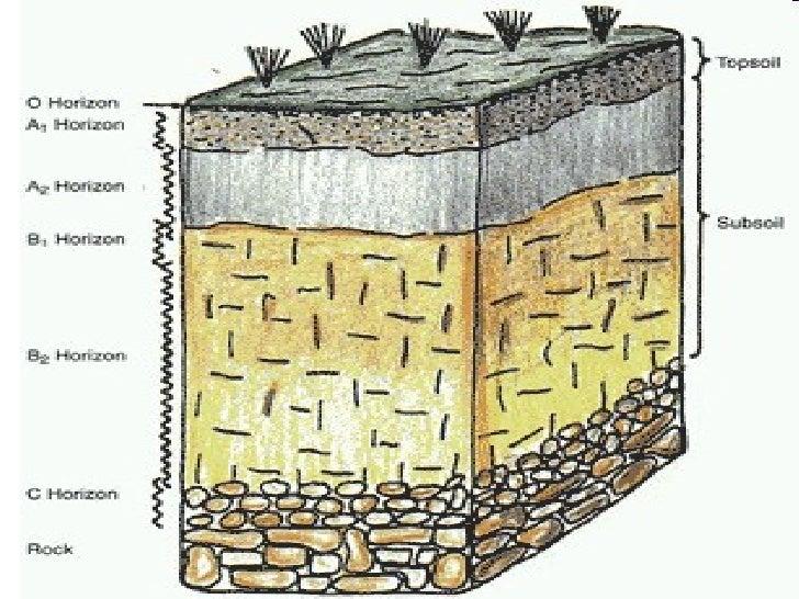 Soil & its formation by Muhammad Fahad Ansari 12IEEM14