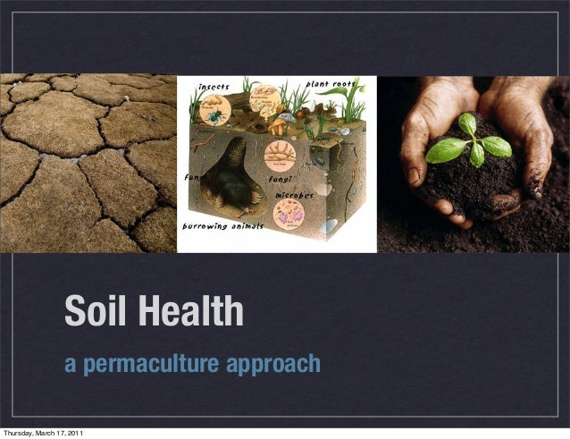 Soil Health a permaculture approach Thursday, March 17, 2011