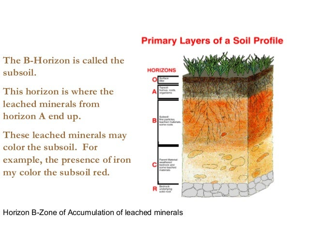 Soil lecture for What is the origin of soil