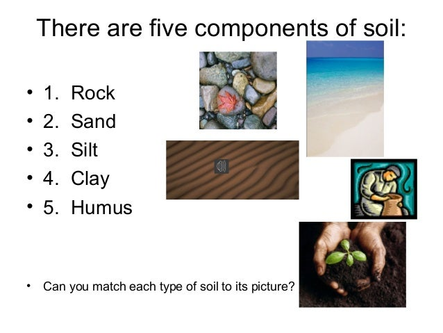 Soil lecture for Mineral constituents of soil